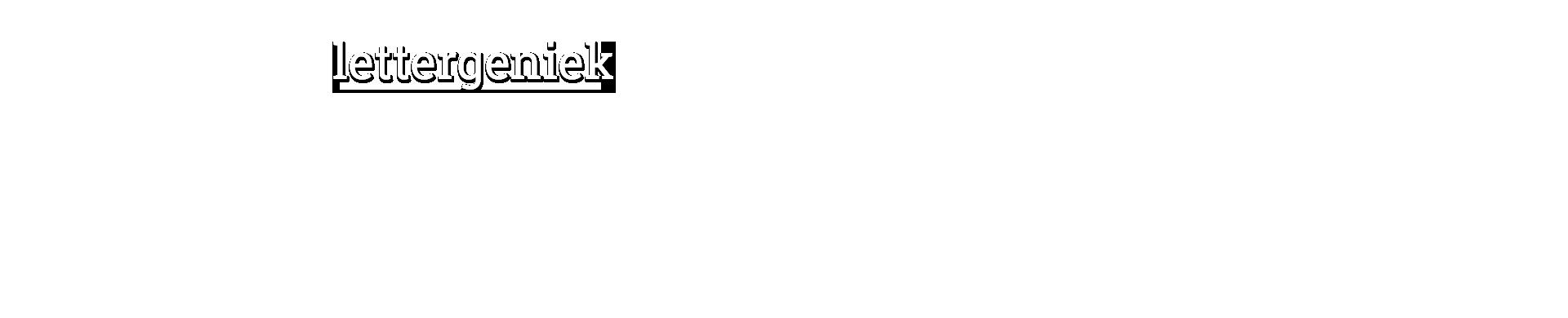 logo lettergeniek tekstburo limburg
